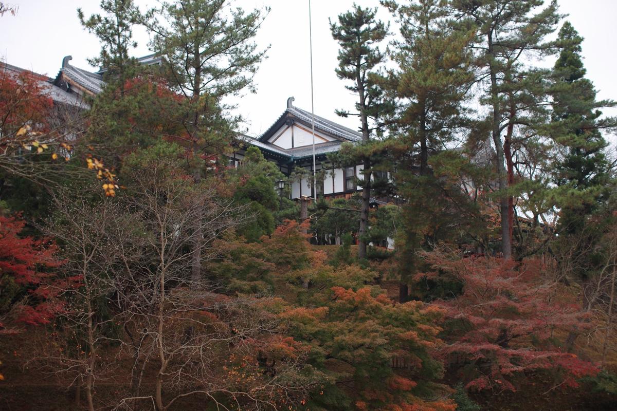 奈良ホテル